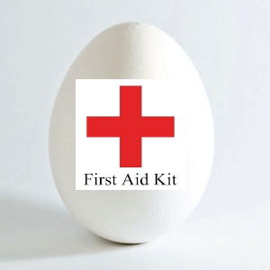 egg first aid kit